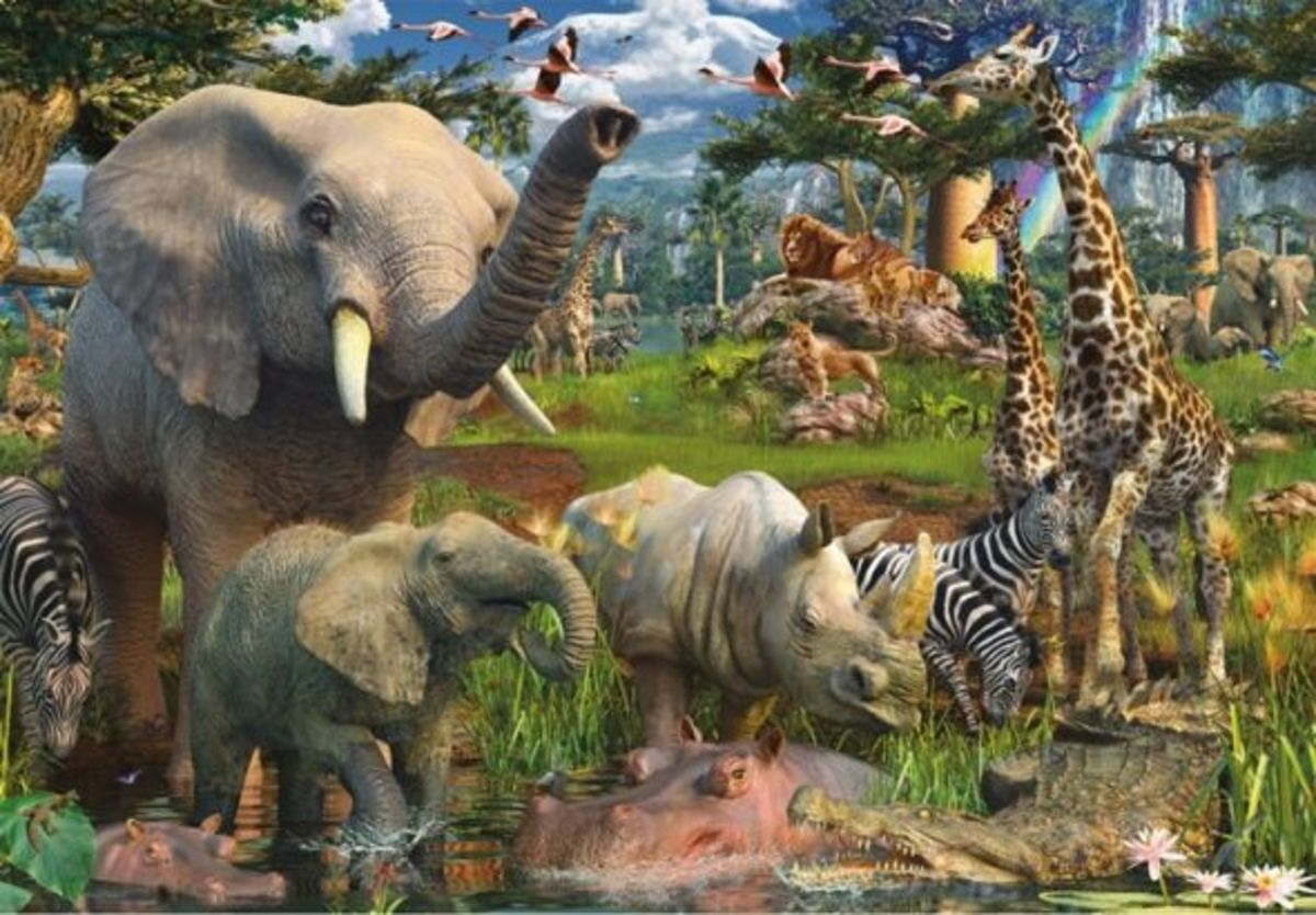 jigsaw-puzzles-for-adults-hq