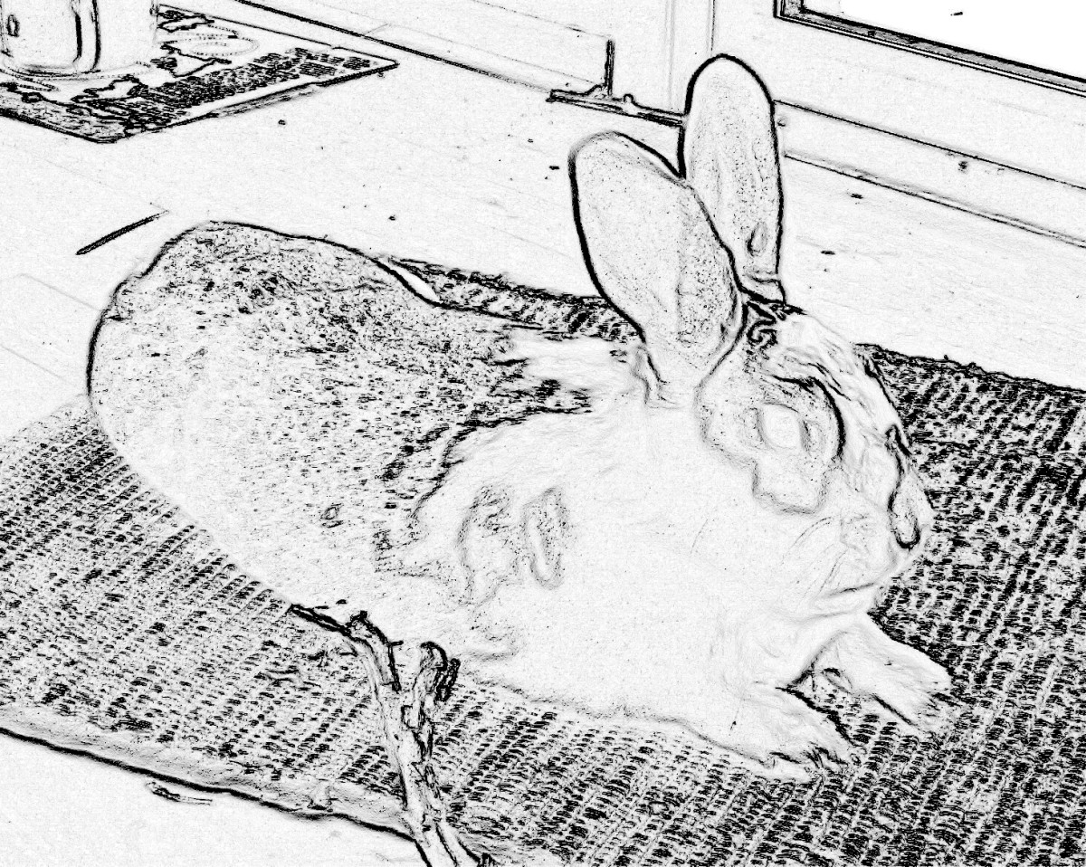 Coloring page created with Paint Shop Pro
