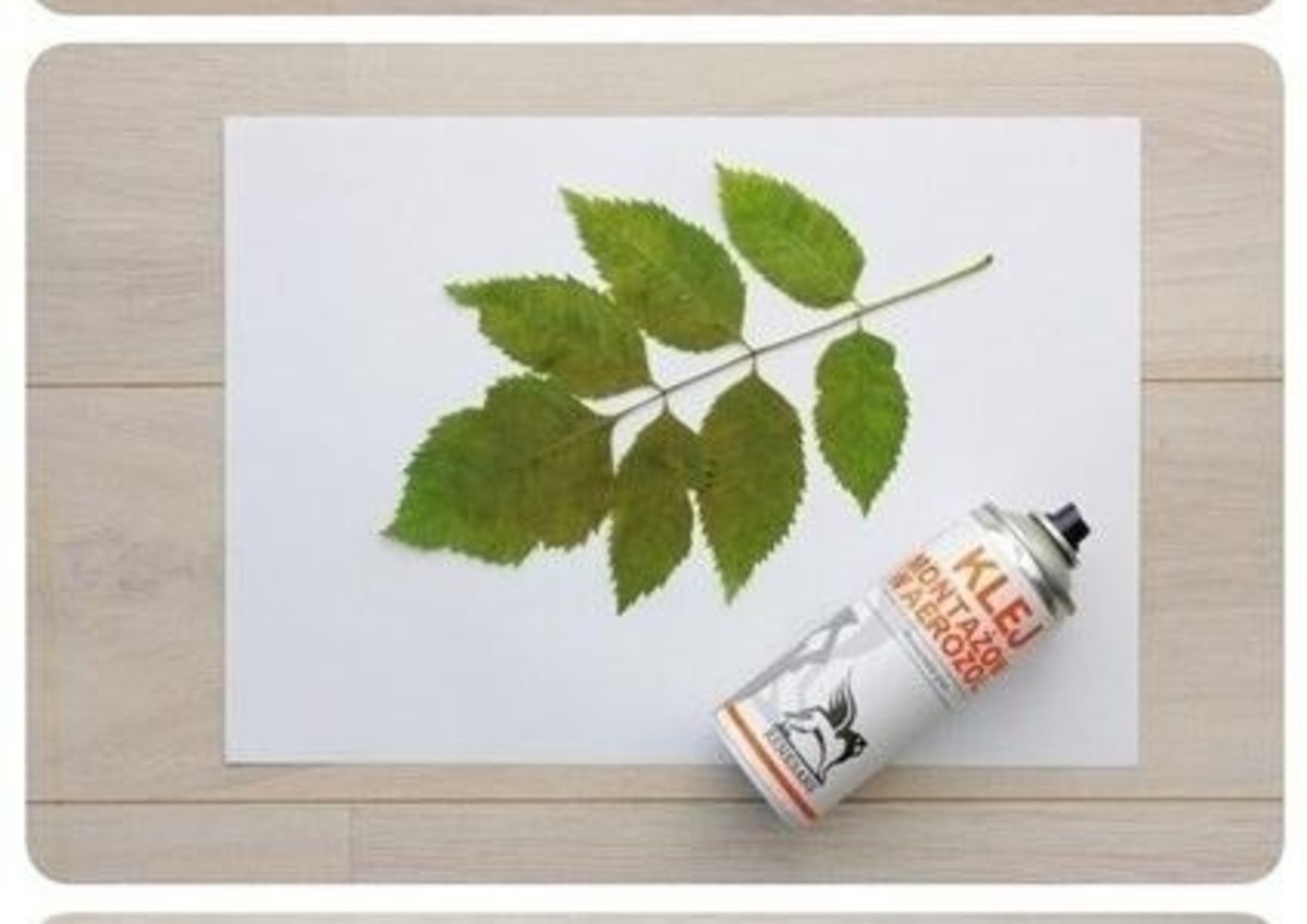 Step 3: On a protected surface, spray each leaf with repositionable spray adhesive, according to the can's directions.  Apply the leaf, which will act as a stencil, to the painted canvas and smooth into position.