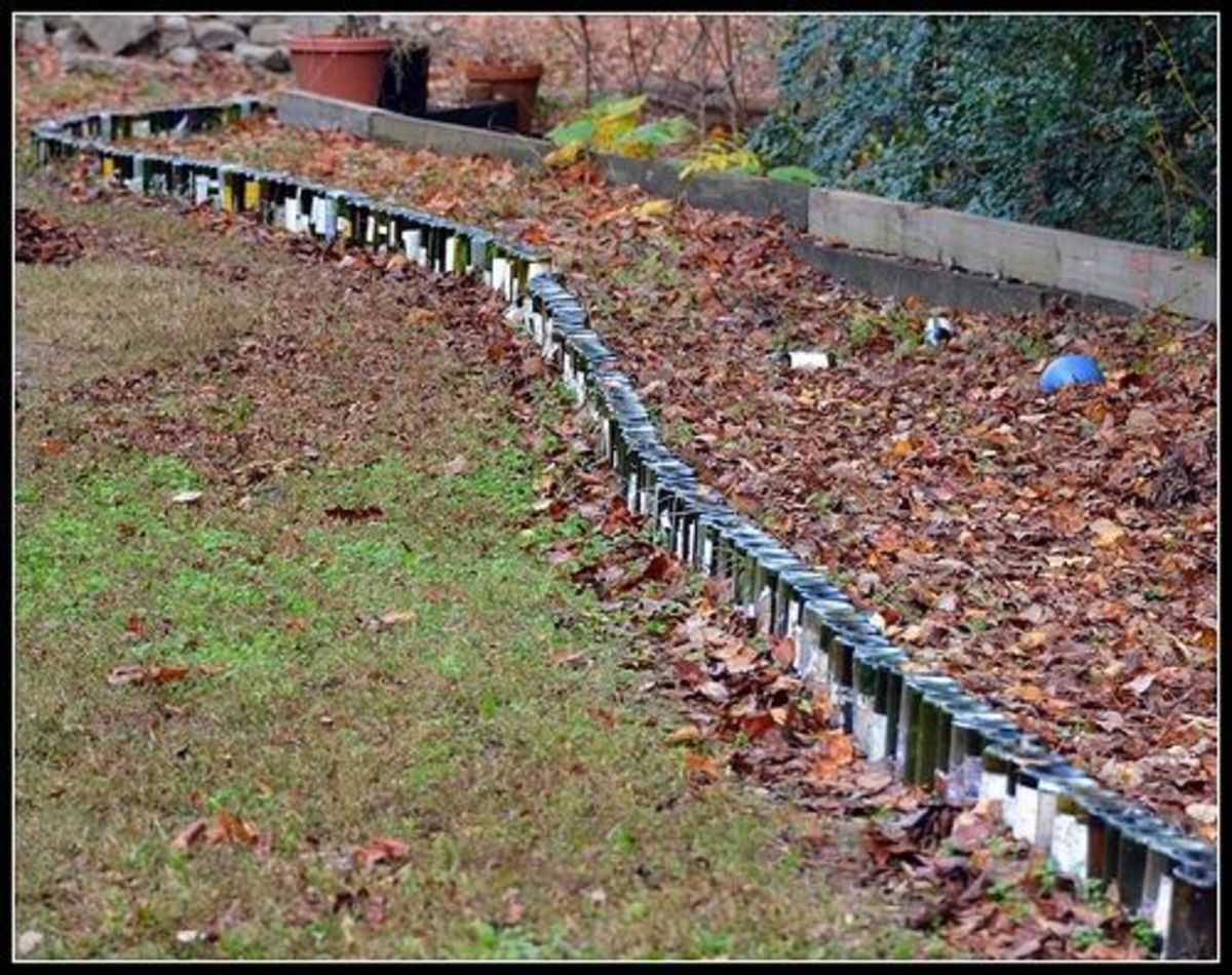 garden borders from recycled materials