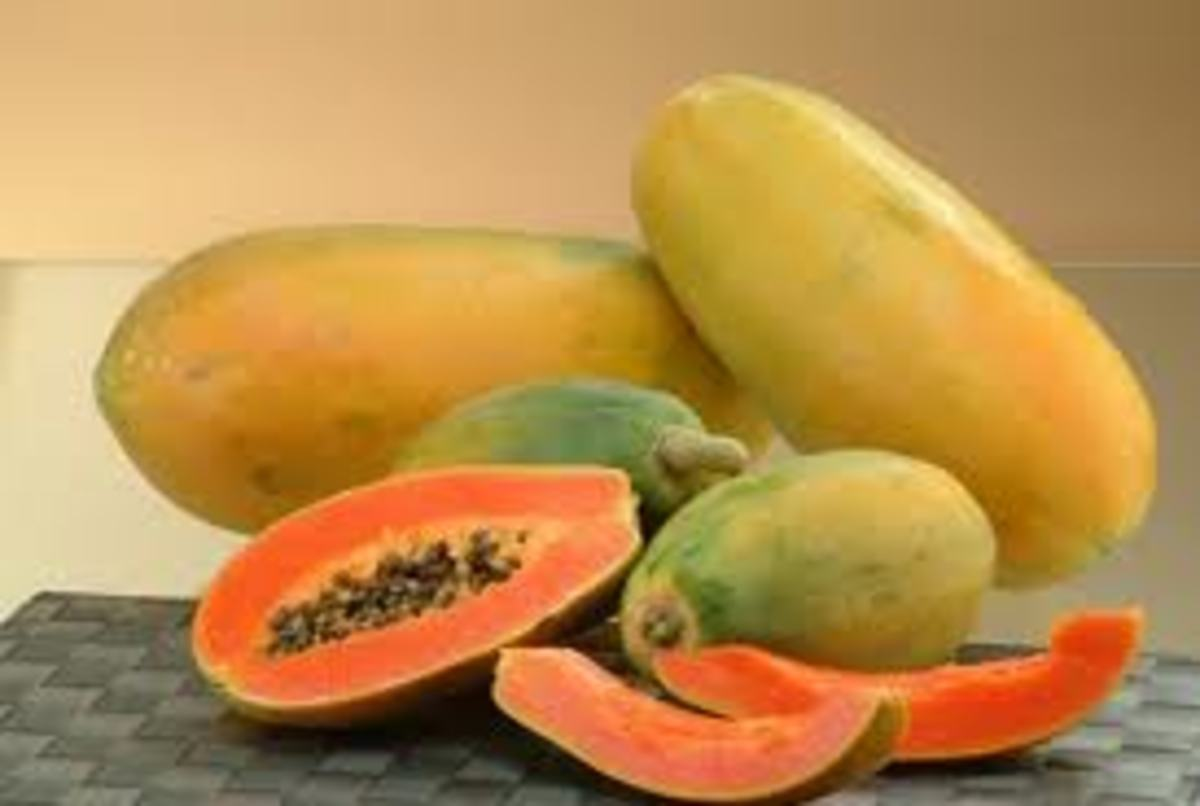 the-nutritious-and-health-benefits-of-tropical-fruits-tamarind-and-papaya