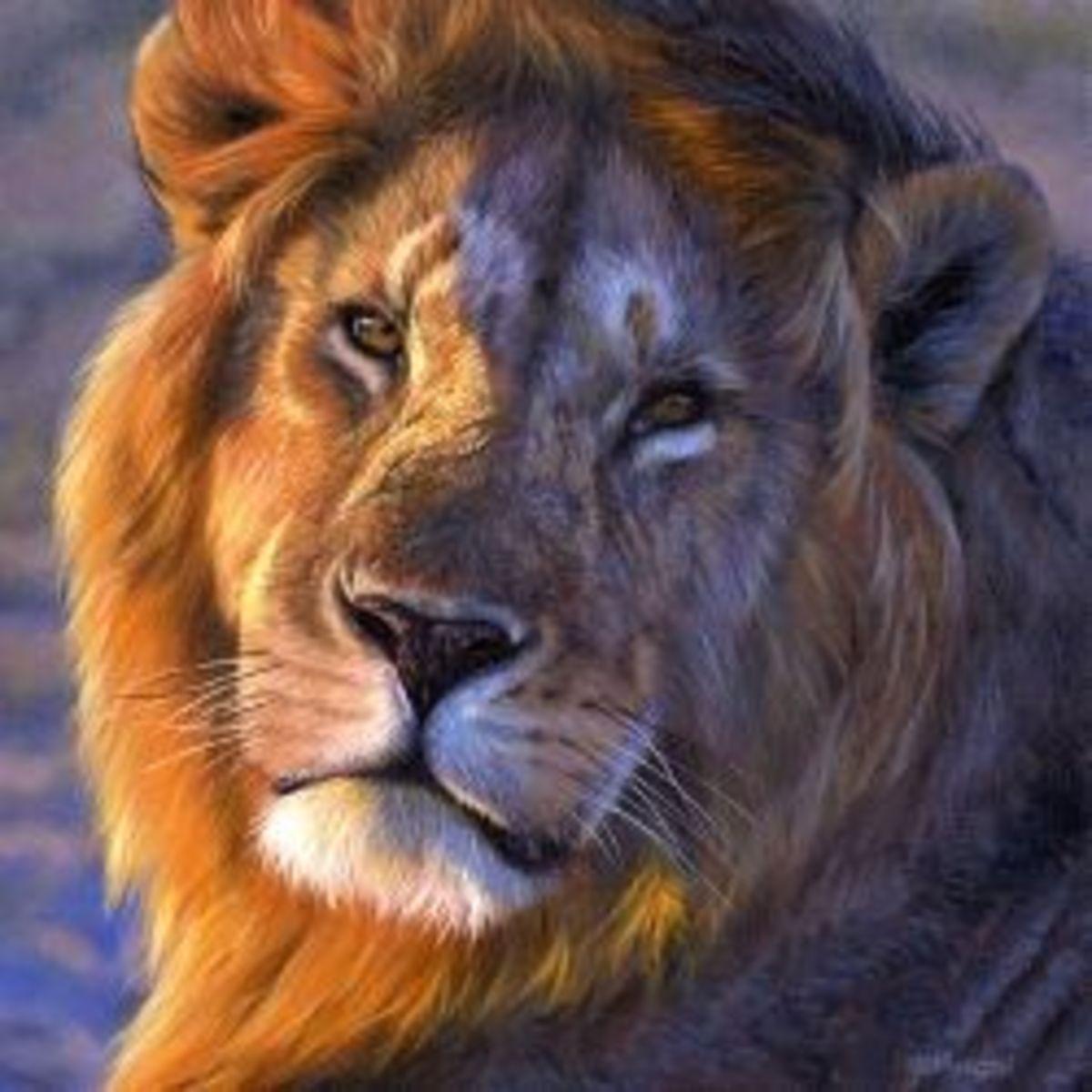 best-documentaries-on-african-wildlife