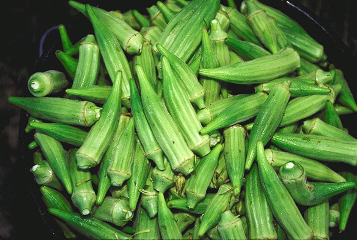 Facts, Health And Nutritional Benefits Of Okra