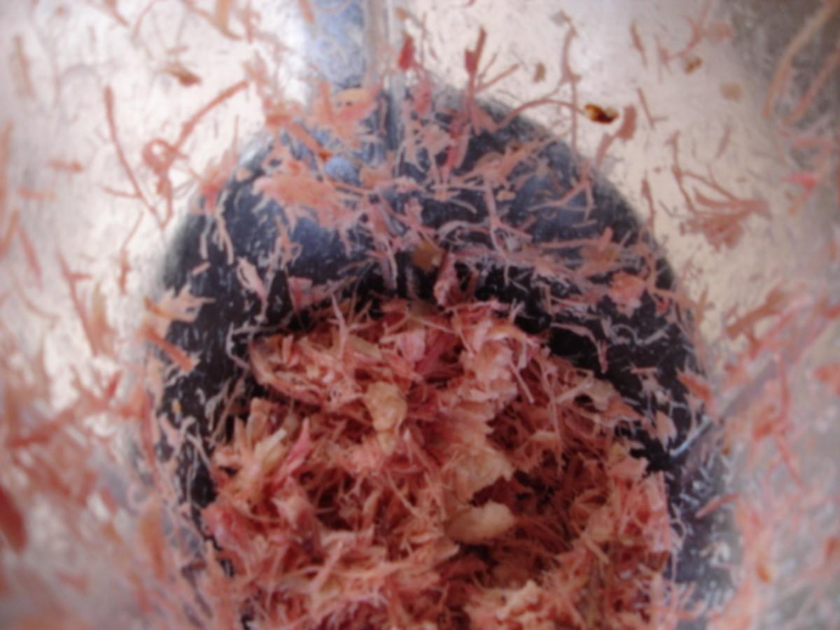 shredding the ham in a blender