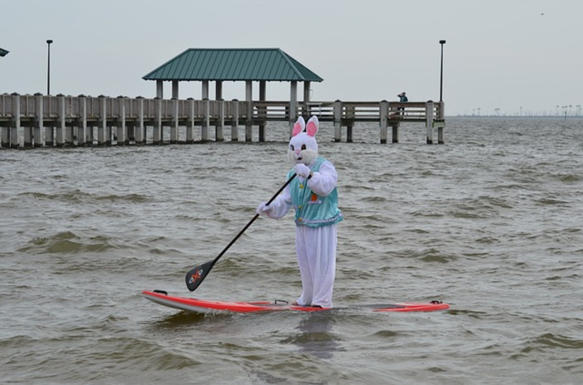 water sports such as paddle boarding needs swim suits not Easter rabbit costumes