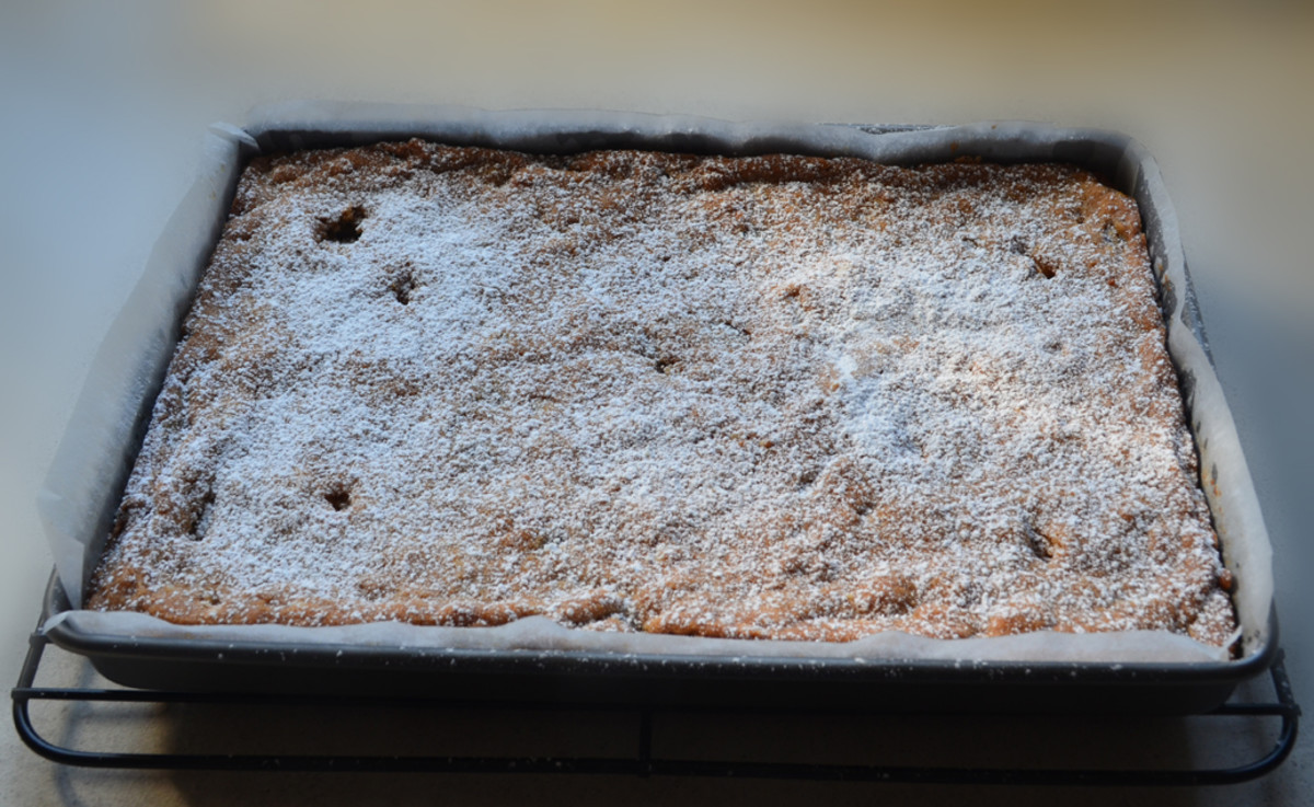 Macadamia Nut and Cranberry slice with Icing Sugar sprinkled on top.