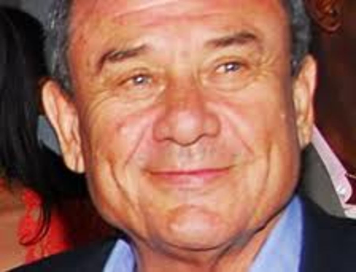 "Sol Kerzner -Bankrupt After the promised ""Pot of Gold."""
