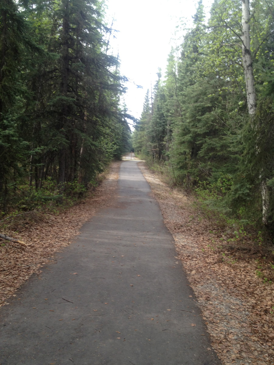 Part of the trail I ran on at Eielson AFB.  Nice trail built for the service men and their families to enjoy a stroll or a good workout.