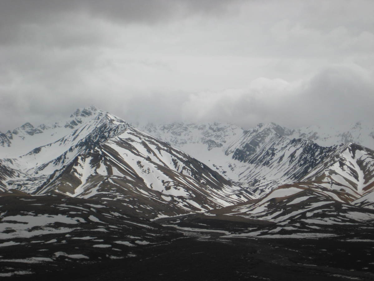 North Pole was not the only place I got to visit, Thank God.  This is in the Denali National Park.