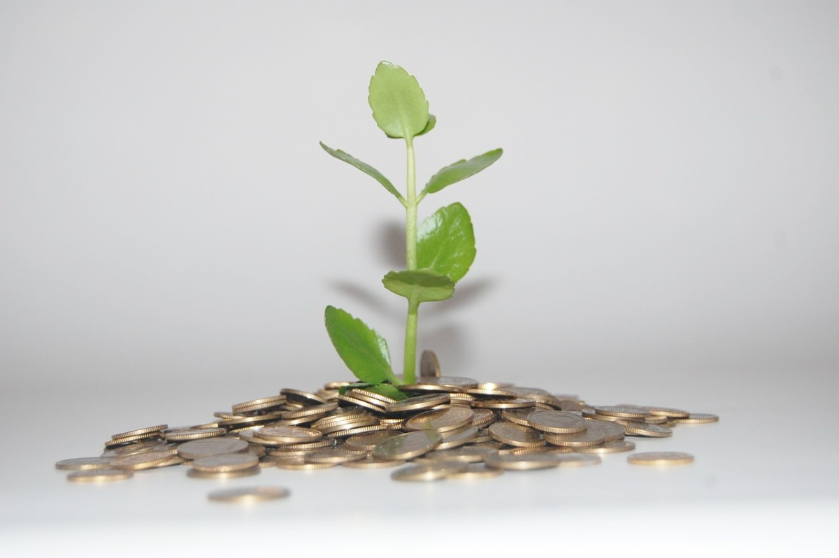 Making smart money decisions is the fastest way to grow your savings!