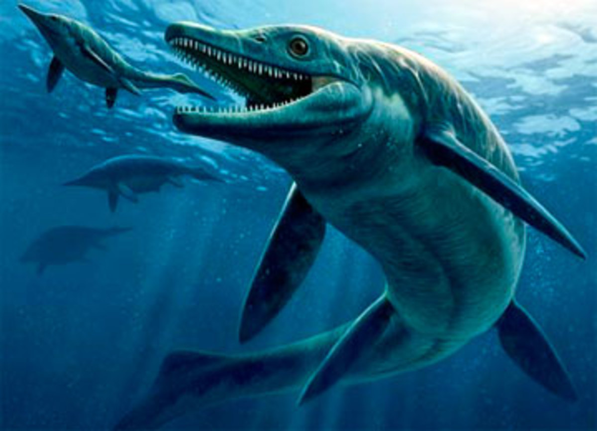 Thalattoarchon, the first sea monster among reptiles.