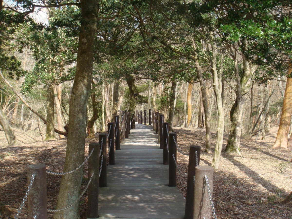 Nature promenade, access