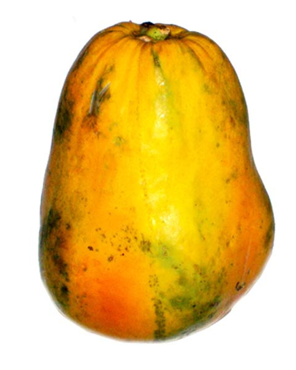 A photo of a papaya