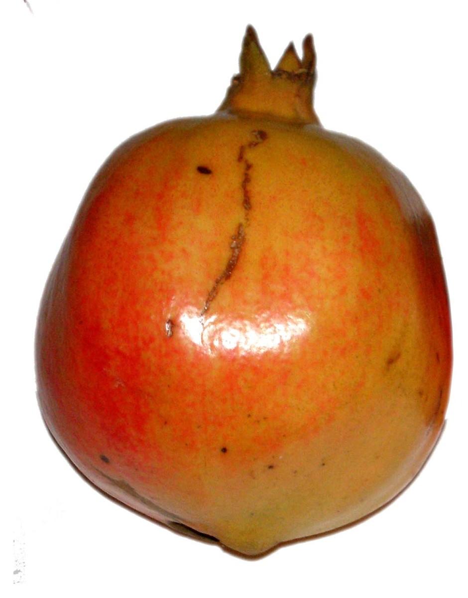 Pomegranates have many seeds