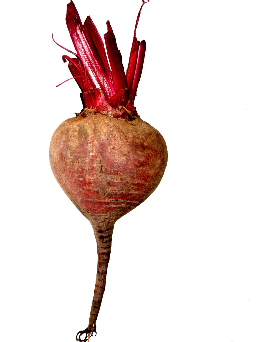 Beetroot picture