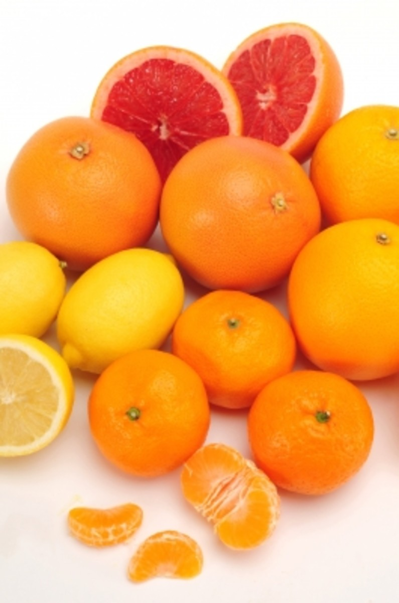 lemon, lime, orange and grapefruit . . . .  save your skins and save a fortune.