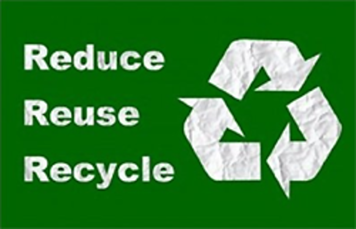 Reduce, Reuse, Recycle poster on Amazon.com