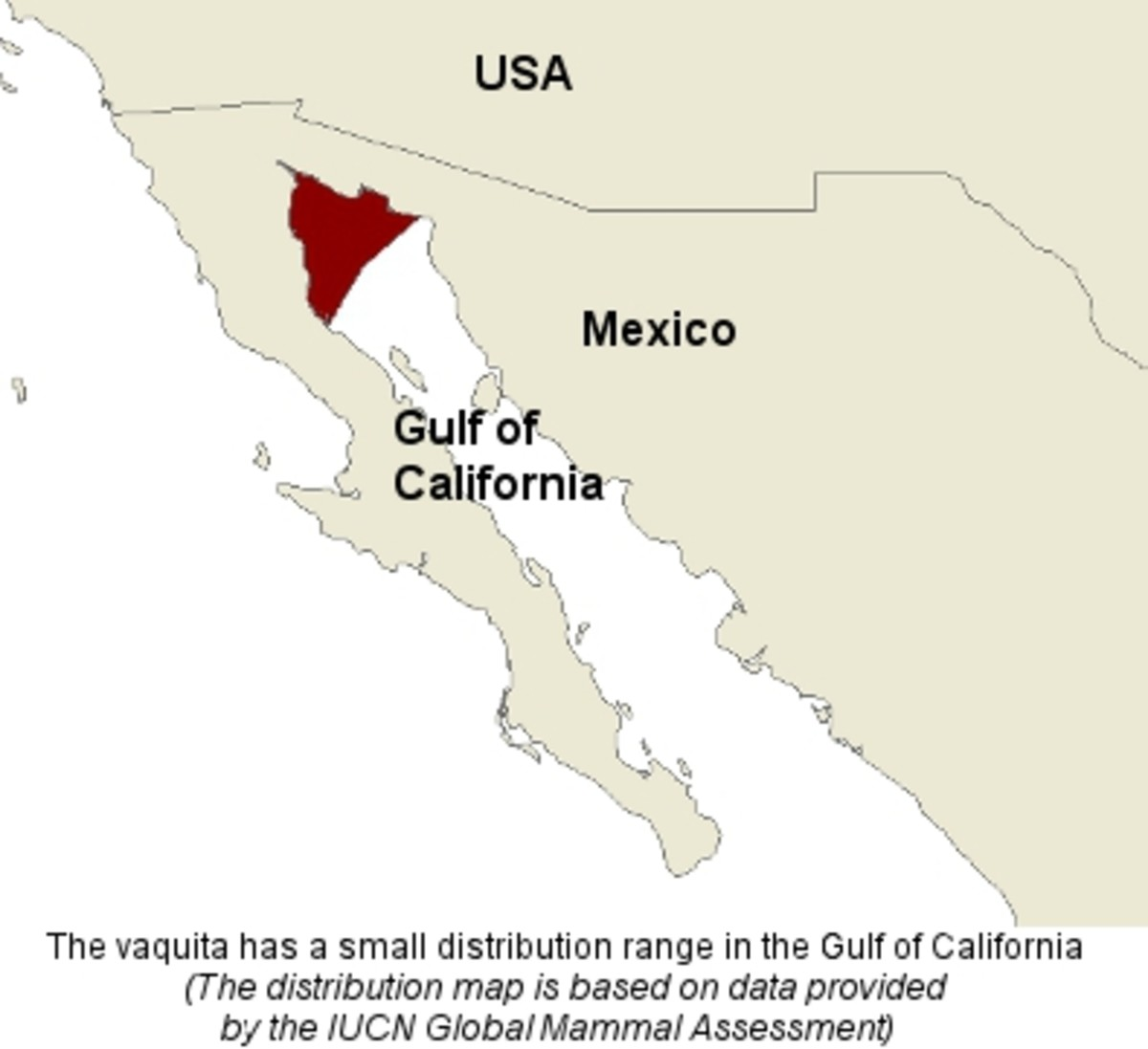 Vaquita distribution range