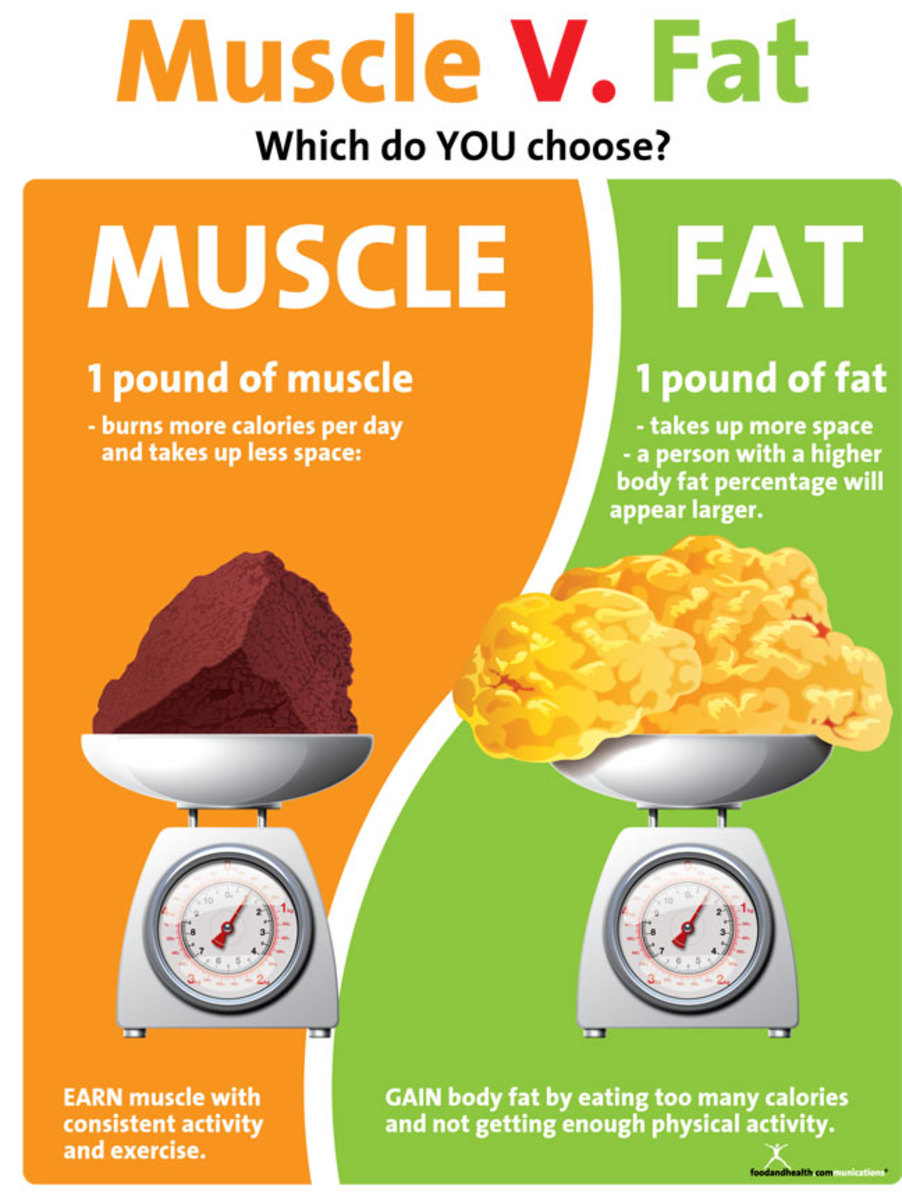 Foods promoting muscle growth