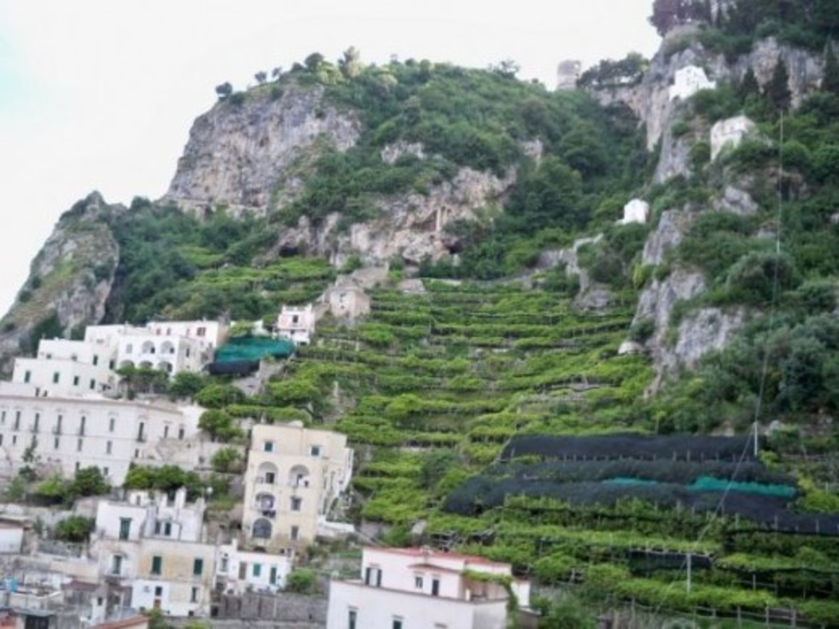 lemons-and-limoncello--on-amalfi-coast-italy