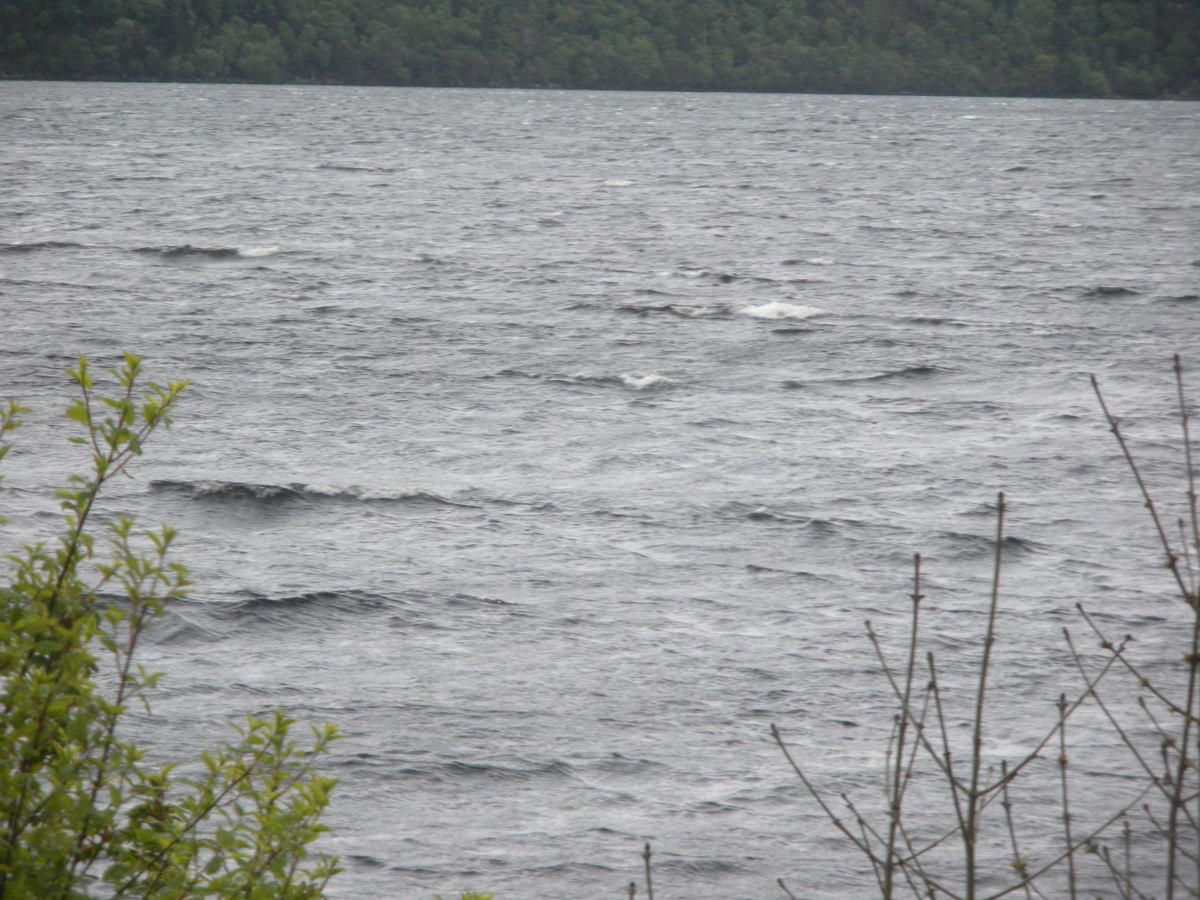Ripples and waves in the water make the Loch Ness Monster adventure even more exciting.
