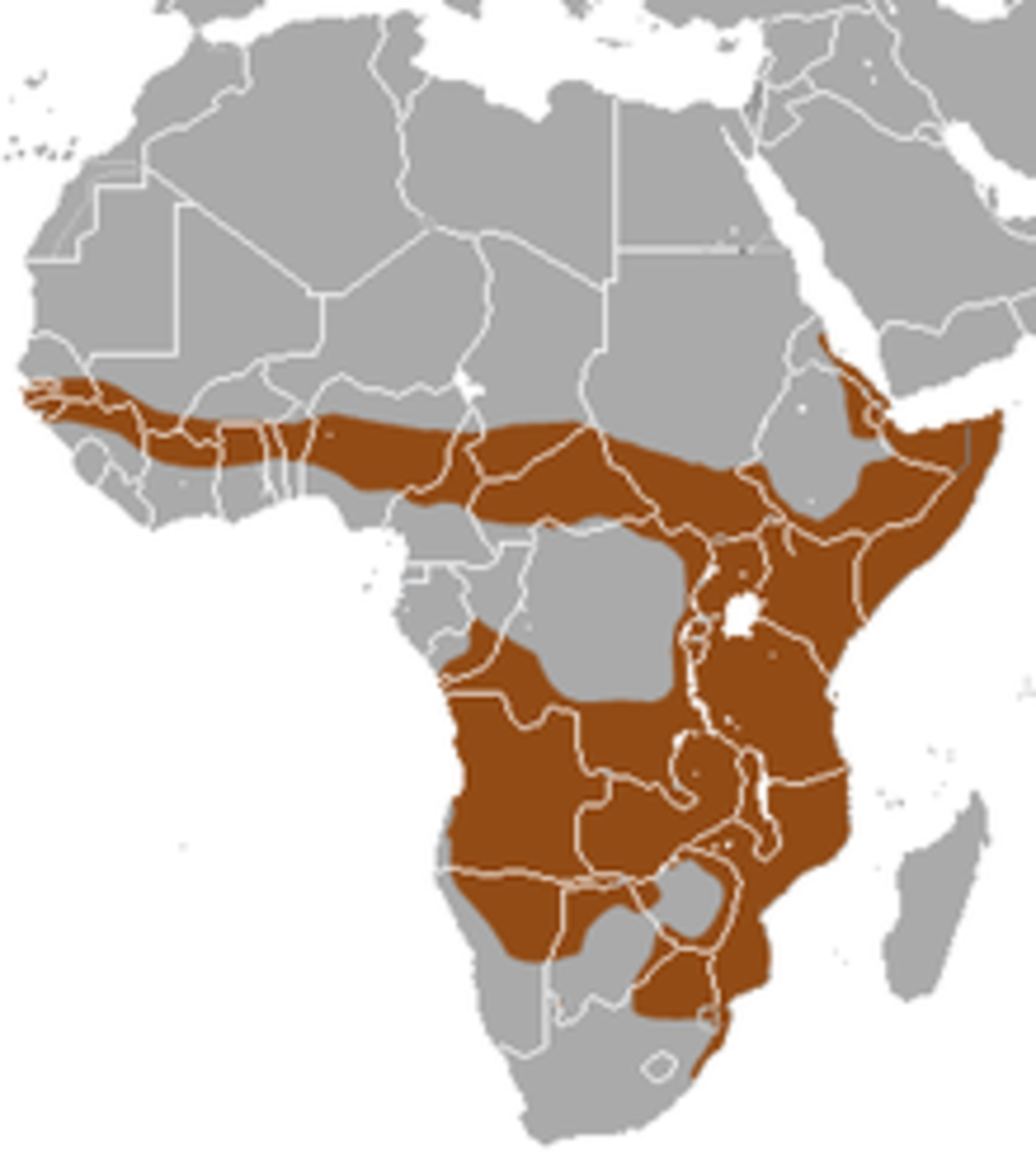 Central & Eastern Africa & South Africa