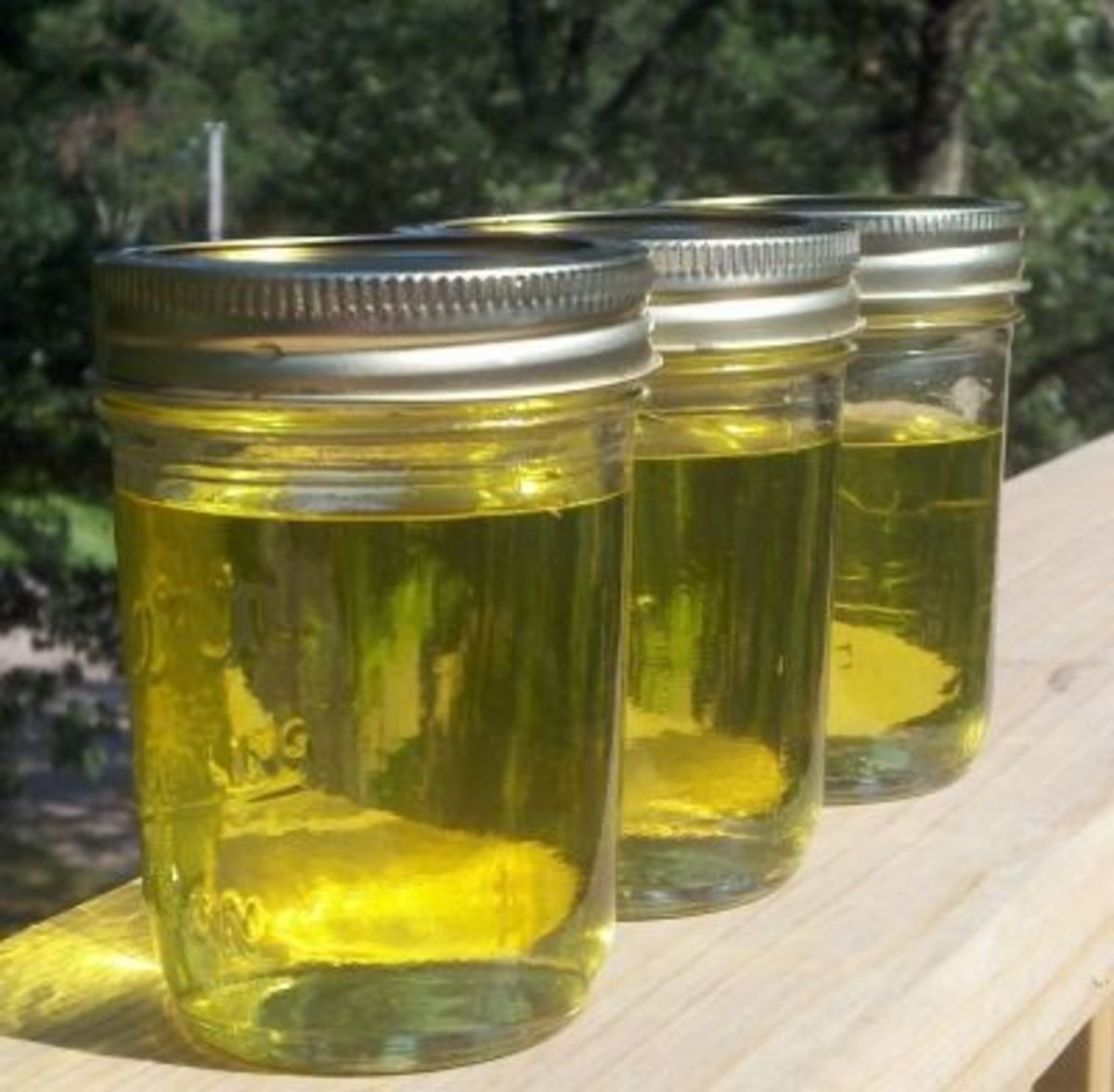 Homemade Clover Honey