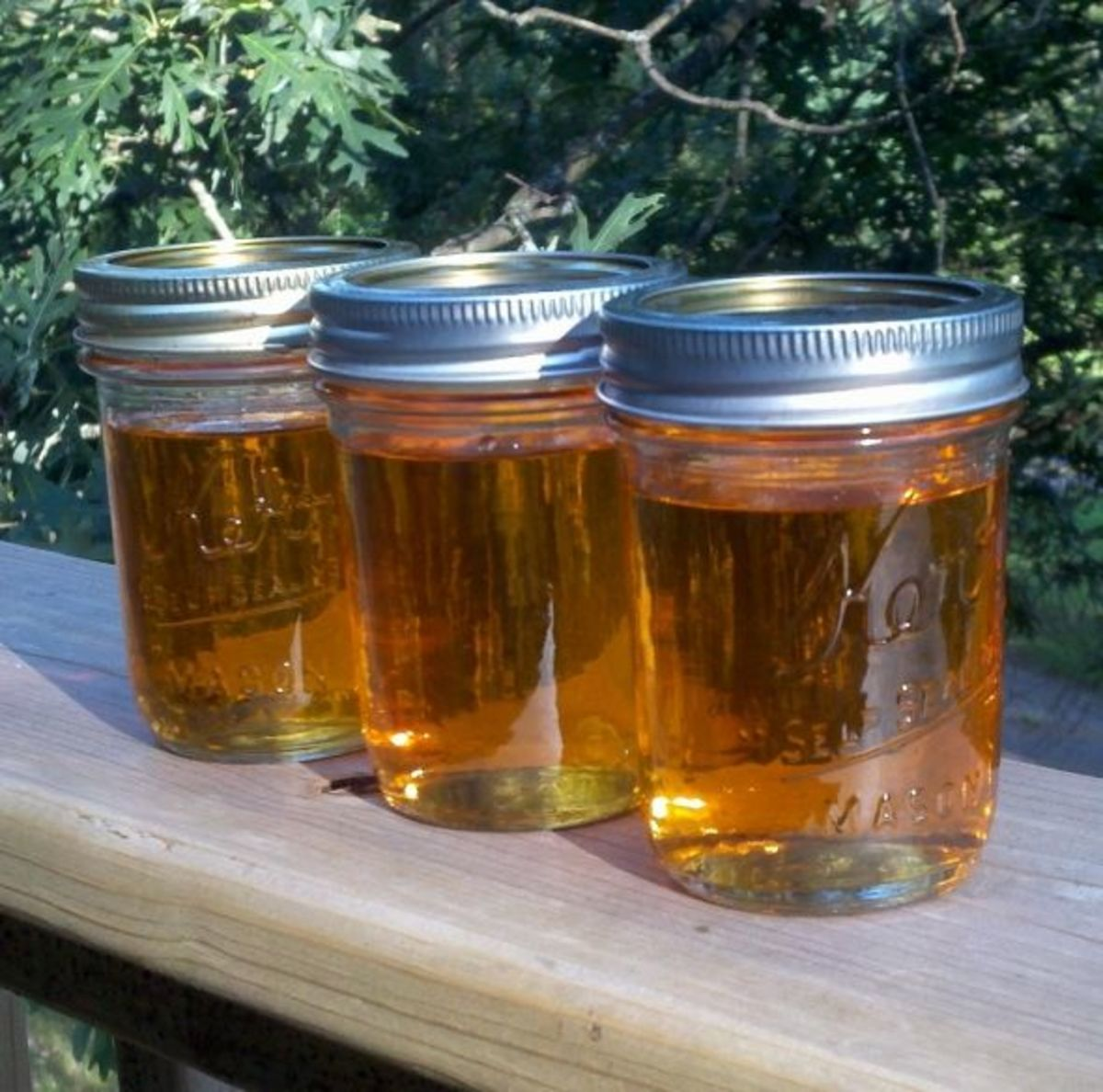 Strawberry-Infused Clover Honey