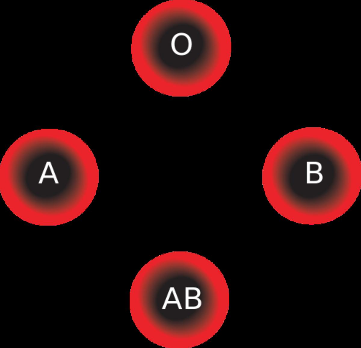 Diagram of blood types