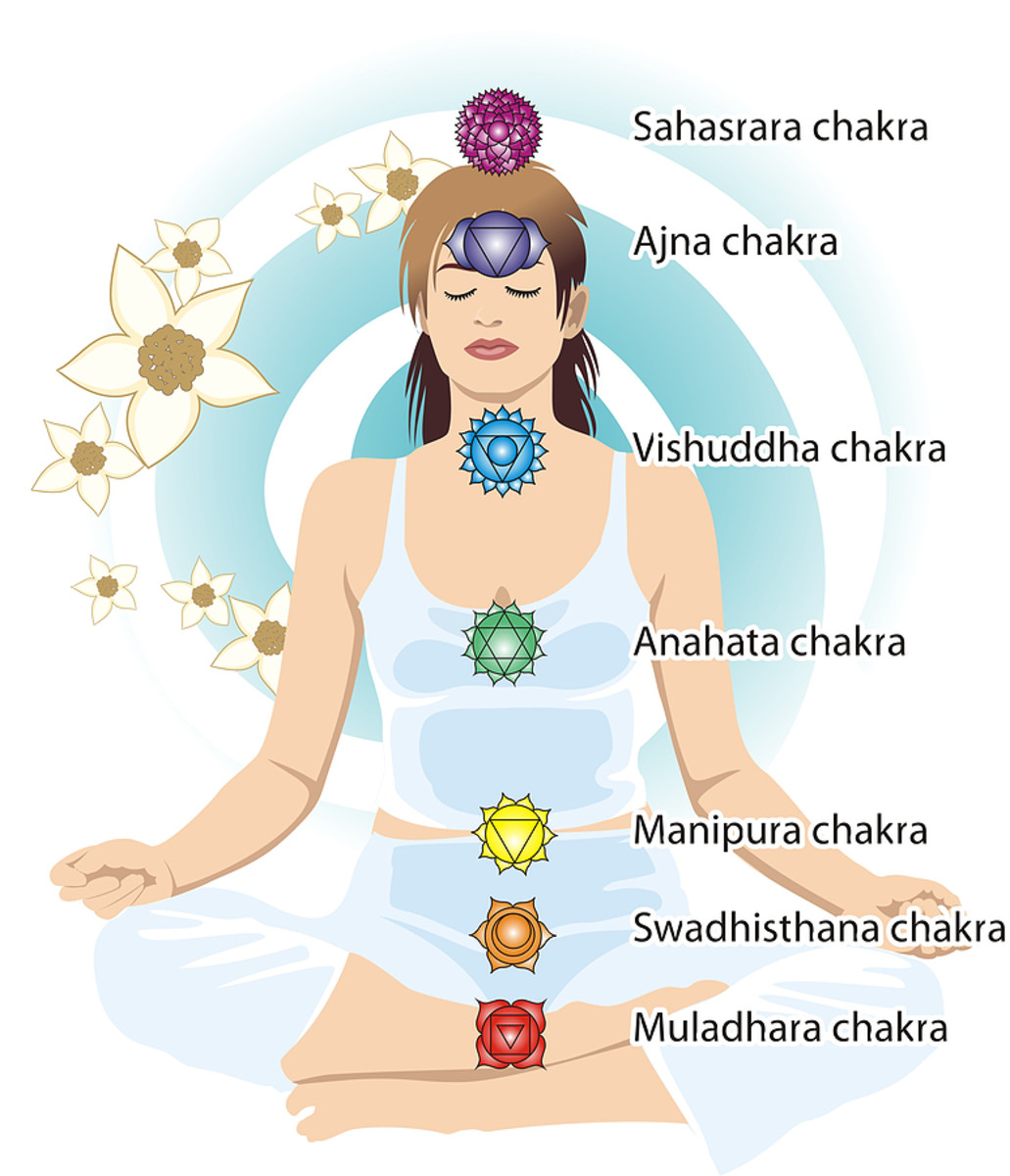 The seven chakras of the human body.