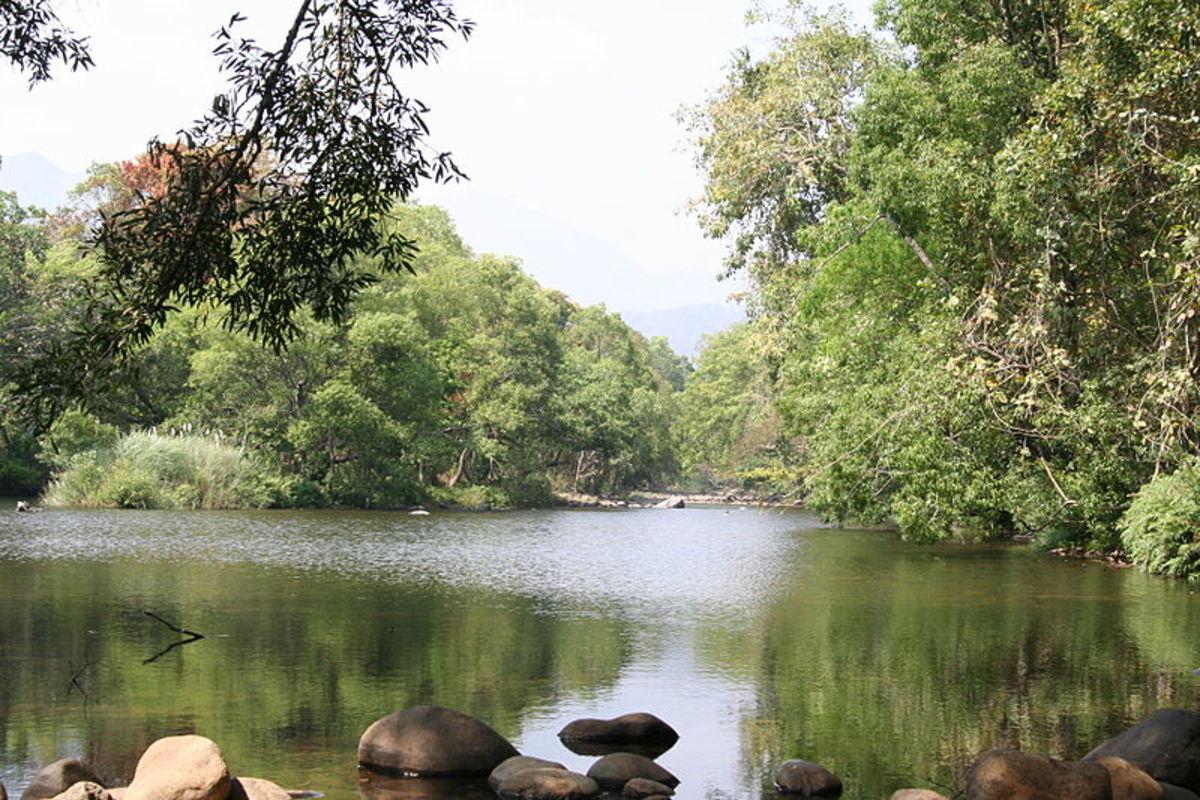 Bhavani River, Silent Valley