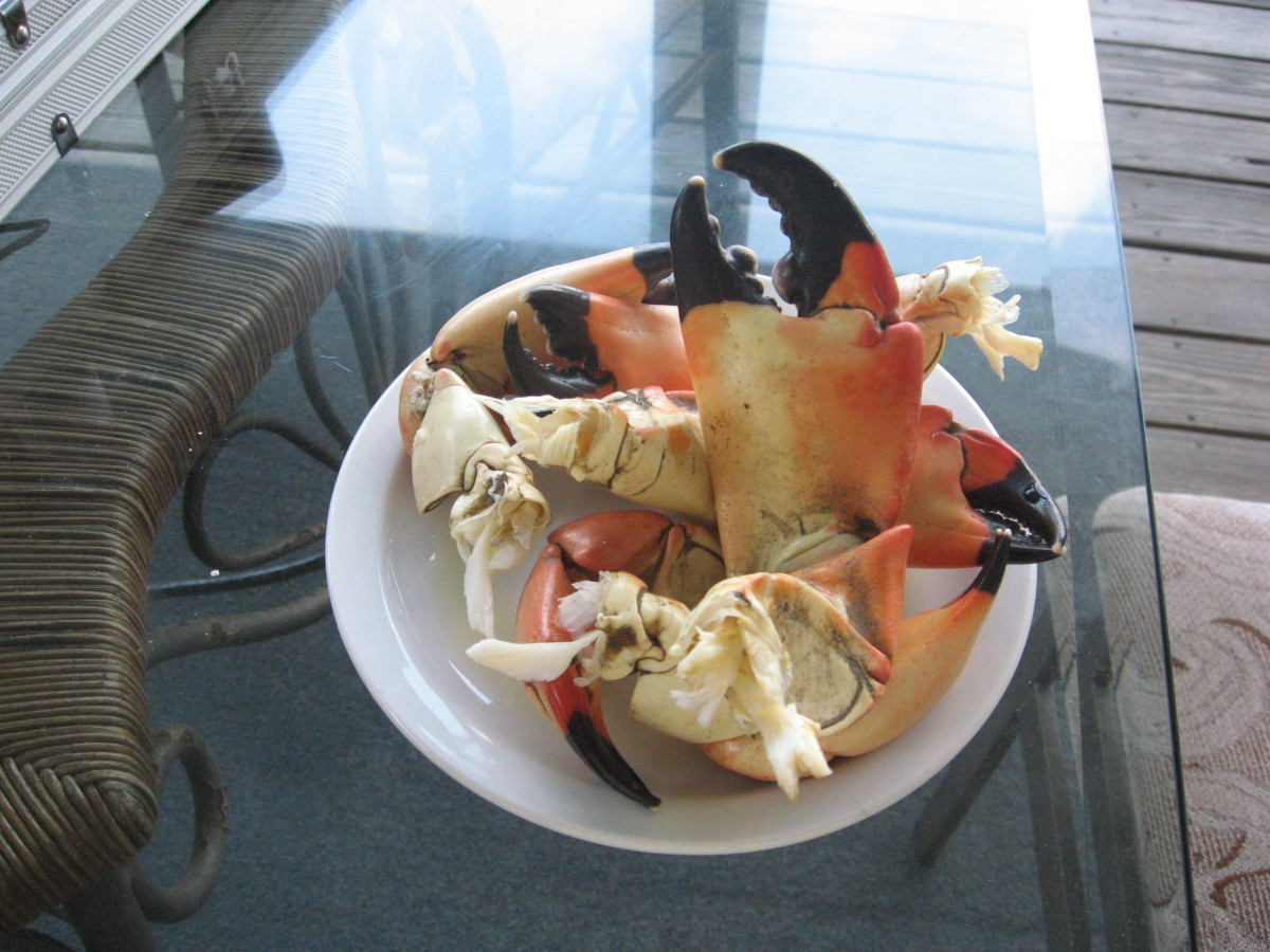 Finger Food Ideas can include stone crab claws with mustard sauce. Yum!