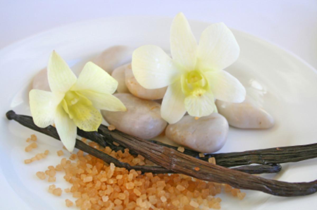 aromatic beauty of vanilla