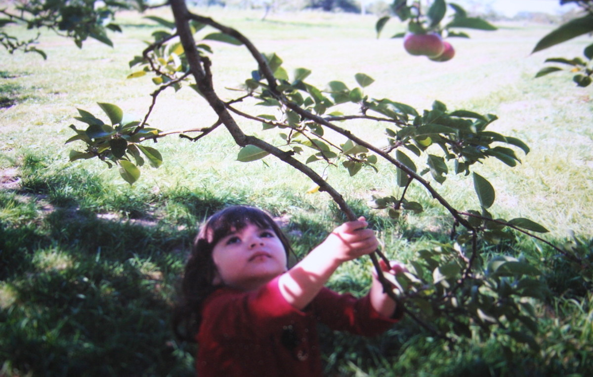Children love apple picking.  Combining an activity making a special treat with apples and a story makes a wonderful memory.