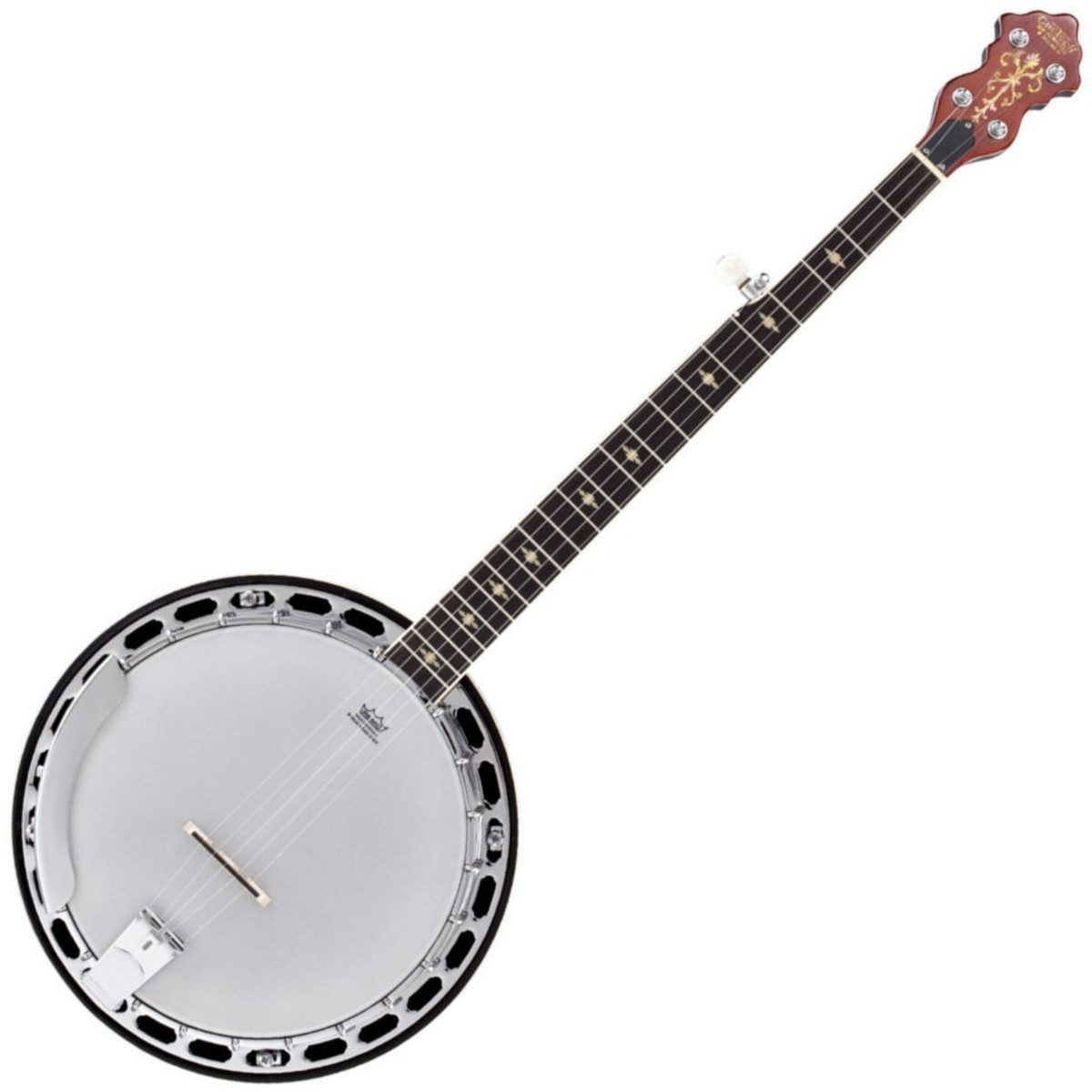 Five-string Resonator Banjo