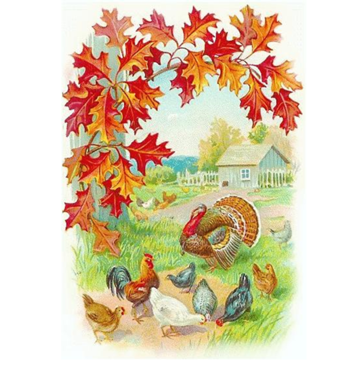 Turkey with Barnyard Chickens