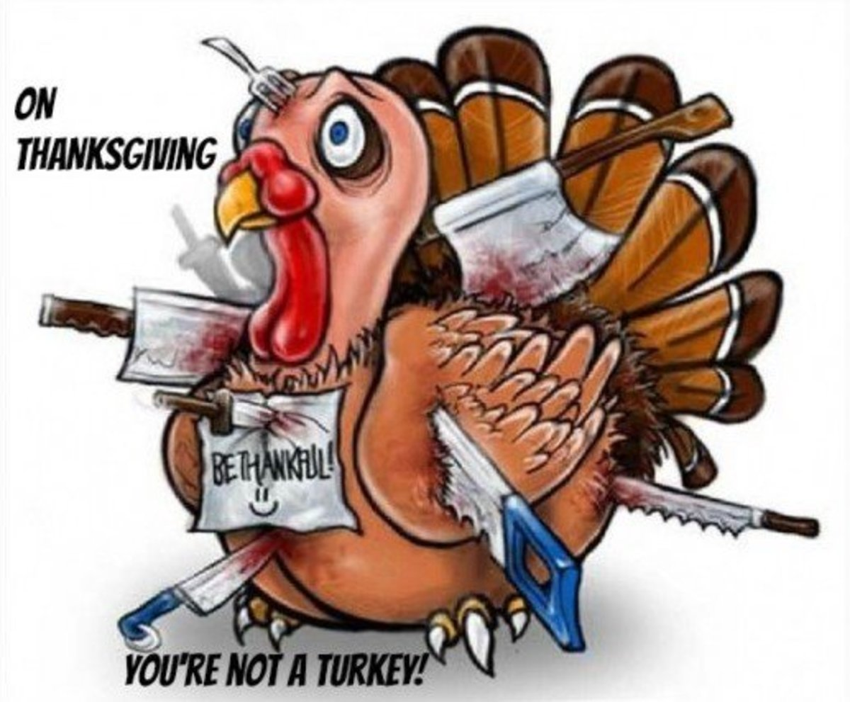 Be Thankful You're Not a Turkey on Thanksgiving