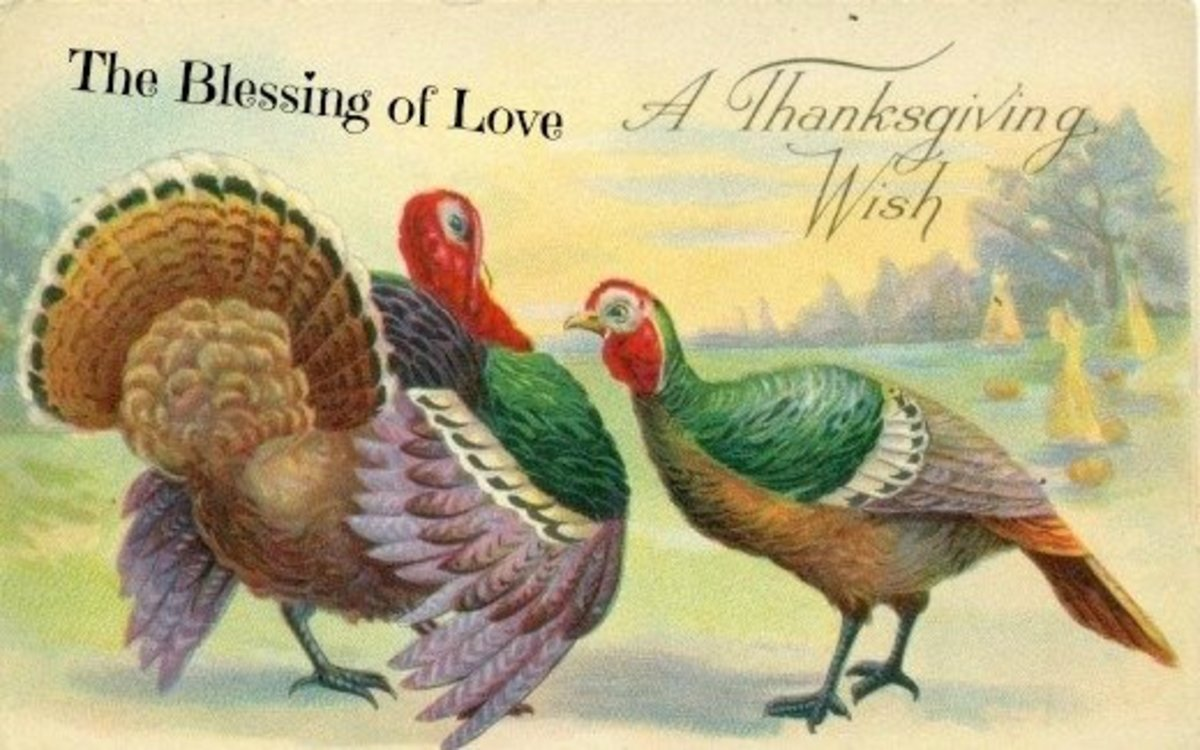 A Happy Thanksgiving Wish