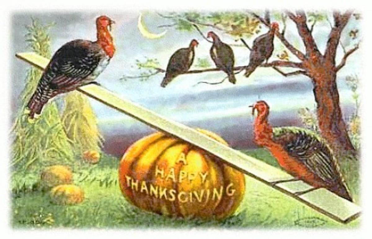 Happy Thanksgiving with Wild Turkeys