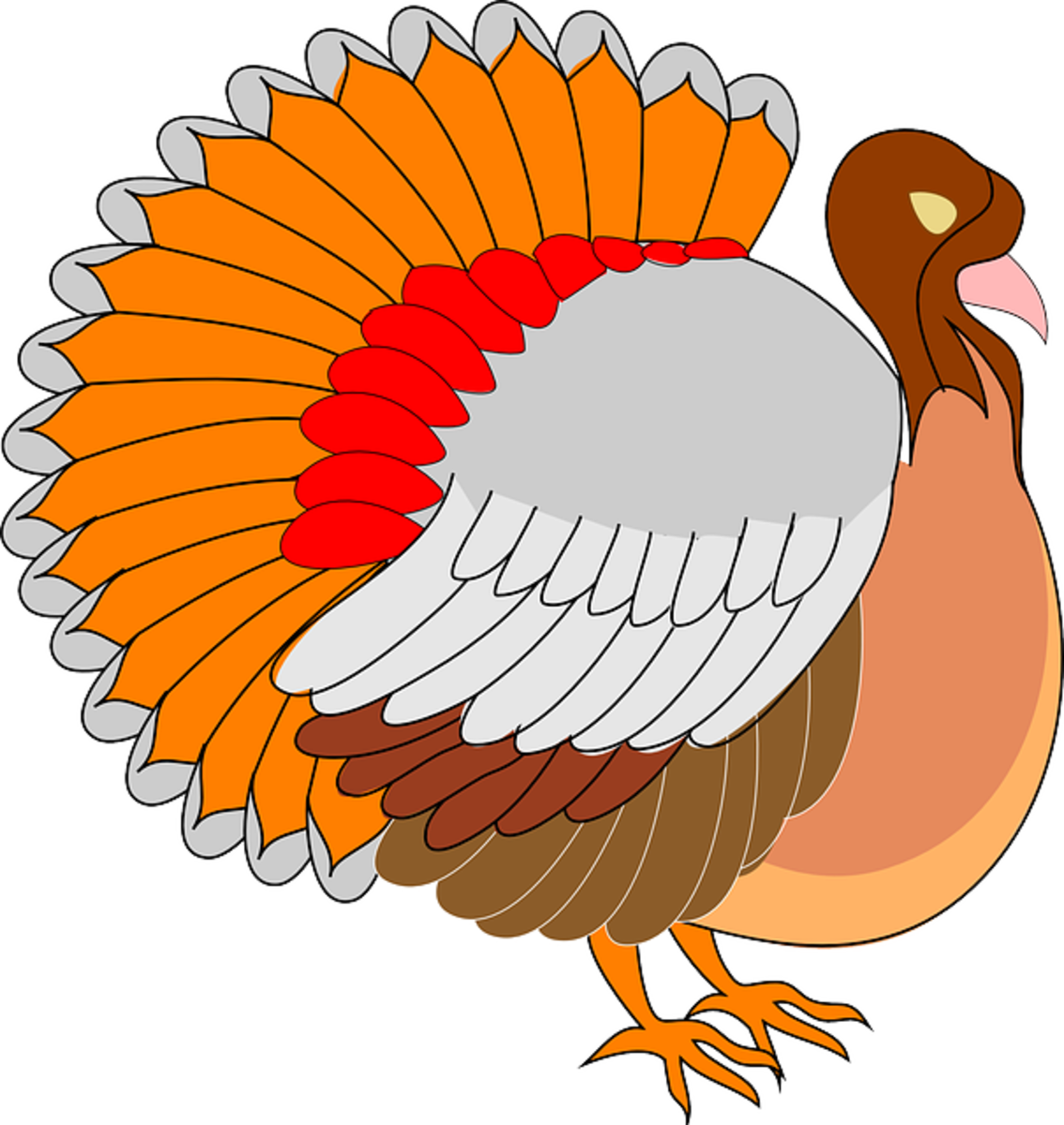 Orange, Red and Brown Turkey