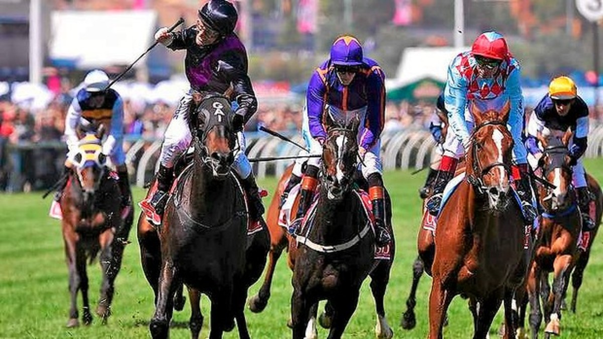 Horse Racing: Is This The World's Most Dangerous Sport?(The Melbourne Cup)