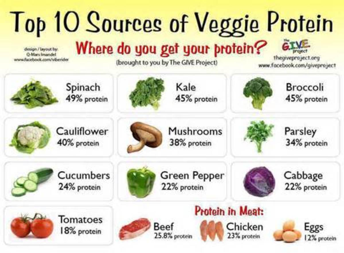 10 of the Best Vegetable Protein Sources