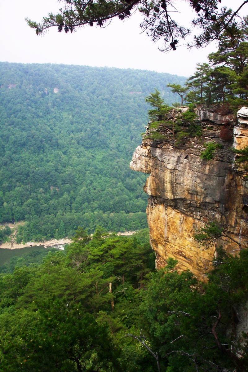 Section of the cliff at Endless Wall in New River Gorge.