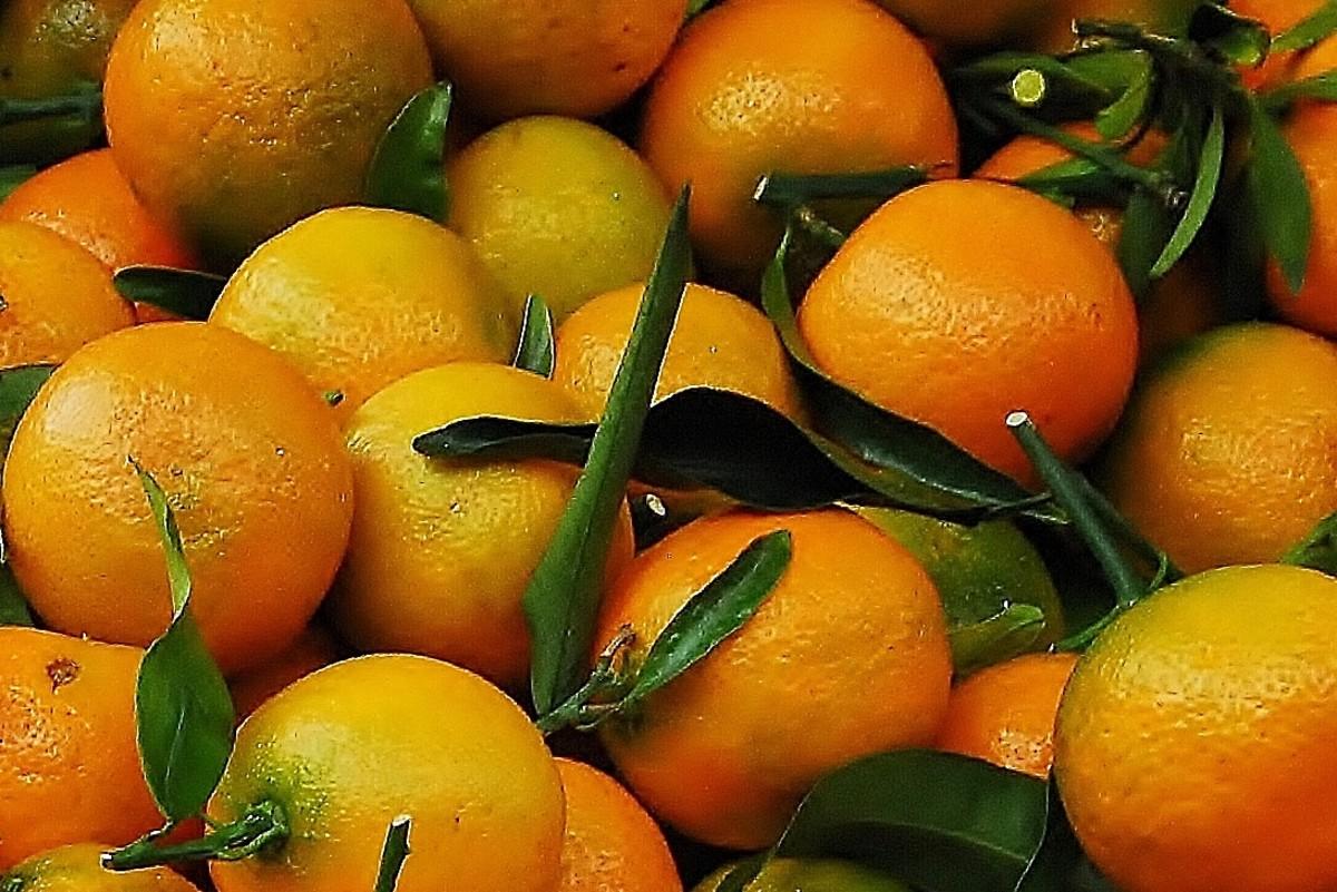 Naartjie's or Tangerine's