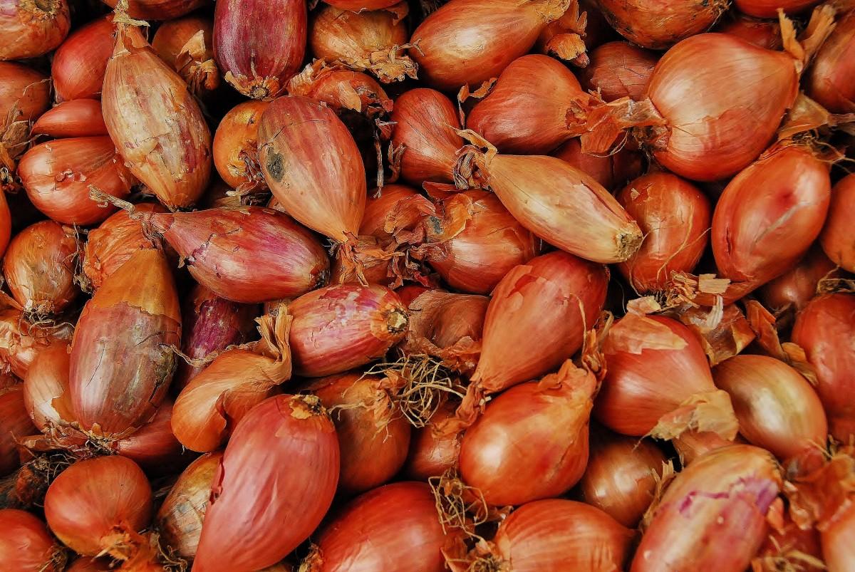 Pickling Onions