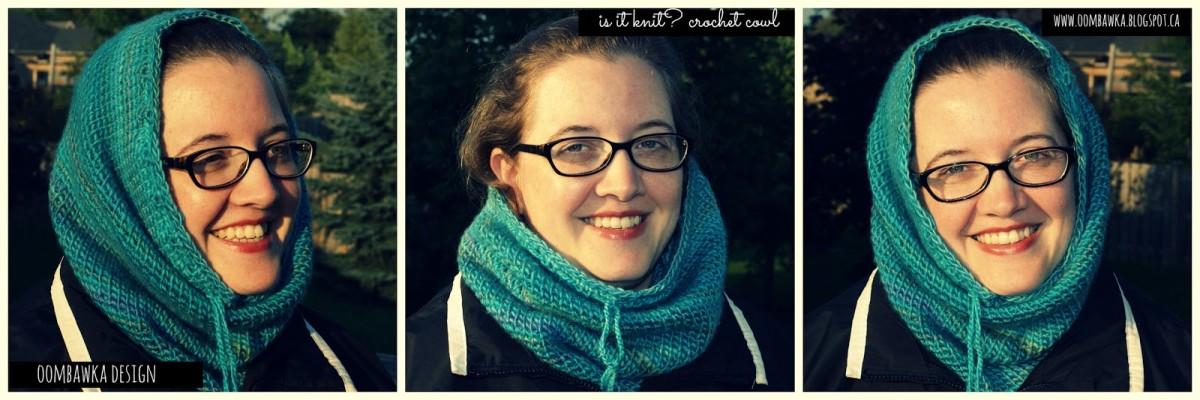 Is It Knit? Basic Crochet Cowl Pattern
