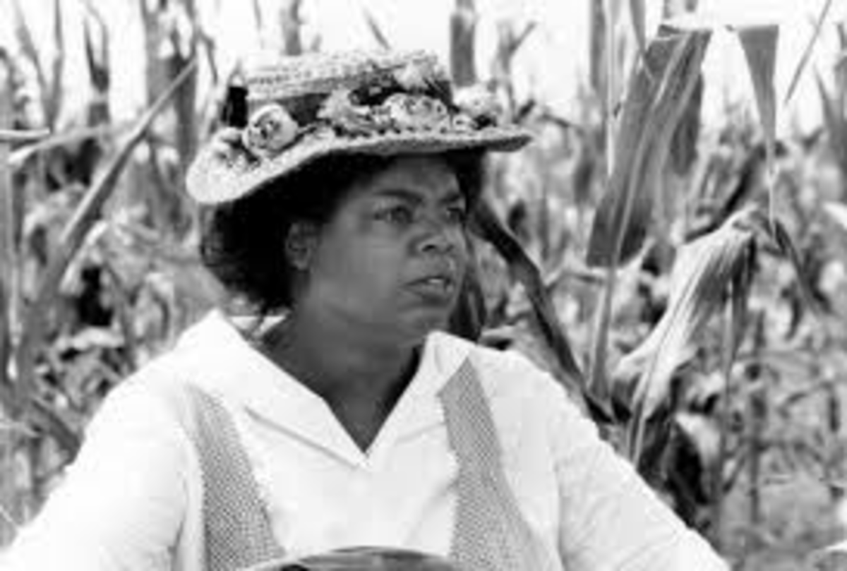 "Oprah as ""Sofia"" in the movie, ""The Colour Purple."""