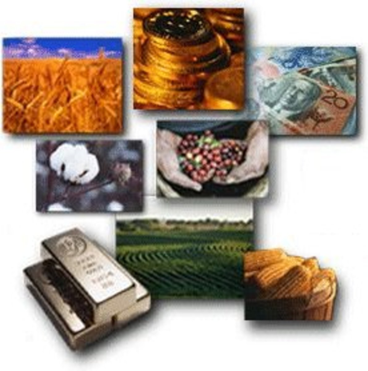 Different types of Commodity Money