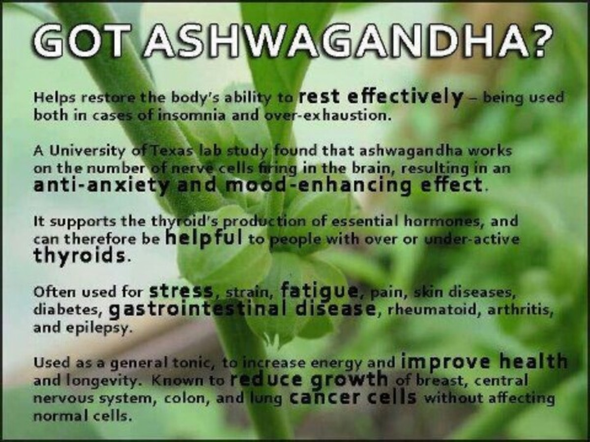 Ashwagandha Health Benefits and Side Effects - What is Ashwagandha ...