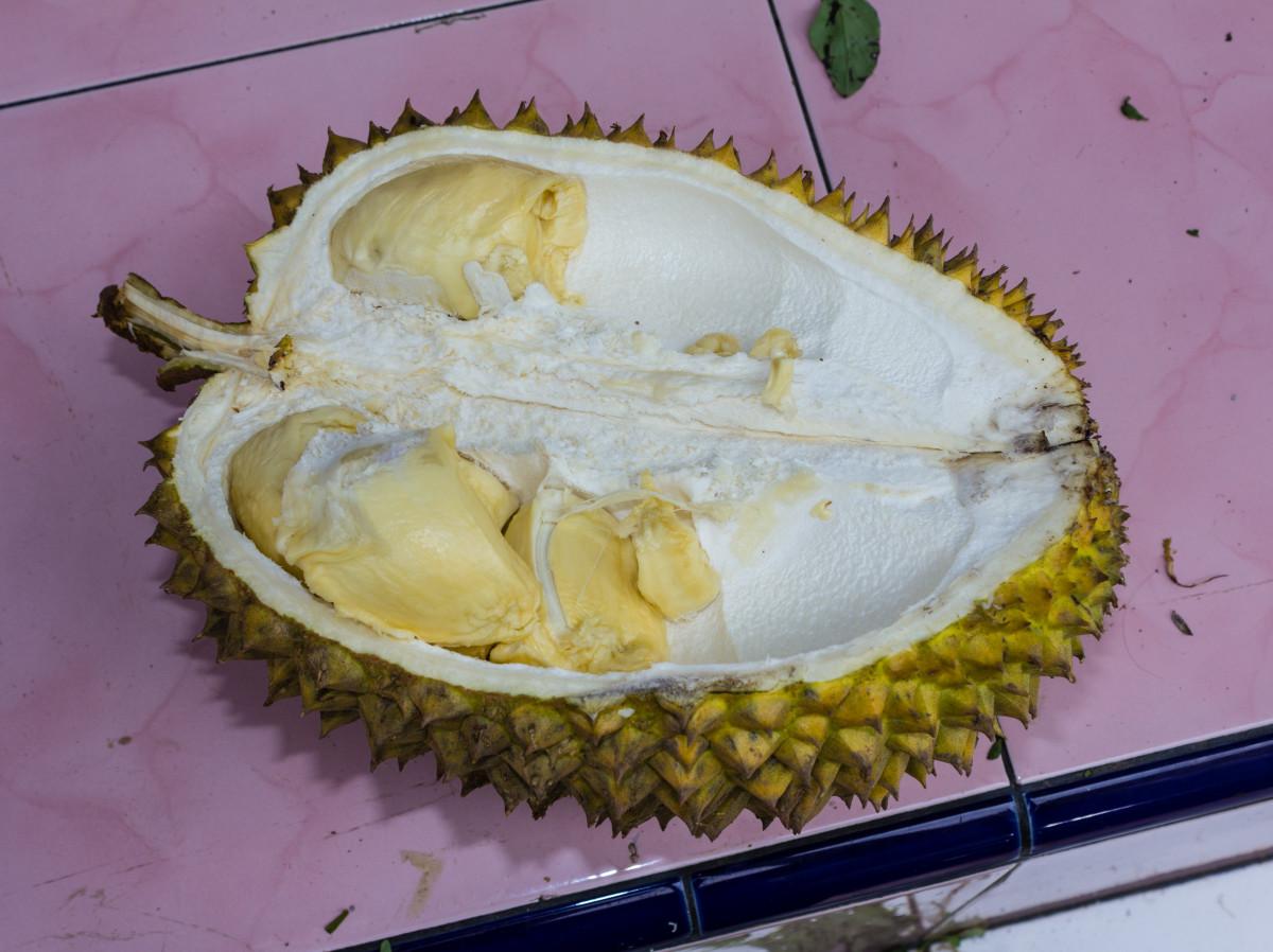 A split durian fruit